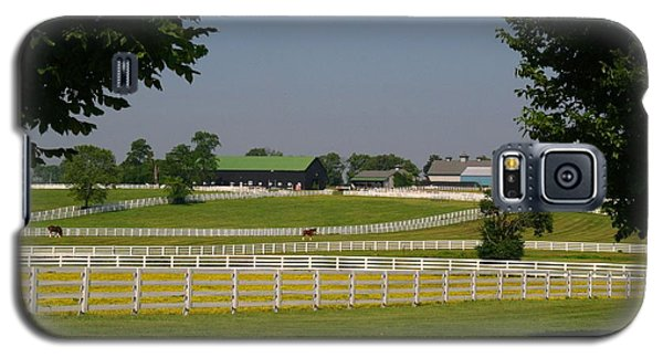 Kentucky Horse Park Galaxy S5 Case by Kathryn Meyer
