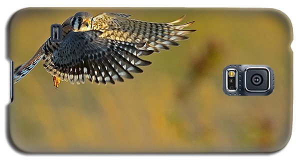Kestrel Takes Flight Galaxy S5 Case