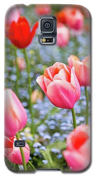 Galaxy S5 Case featuring the photograph Keukenhof Tulips - Amsterdam by Melanie Alexandra Price