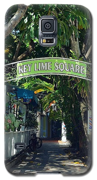 Key Lime Square Galaxy S5 Case