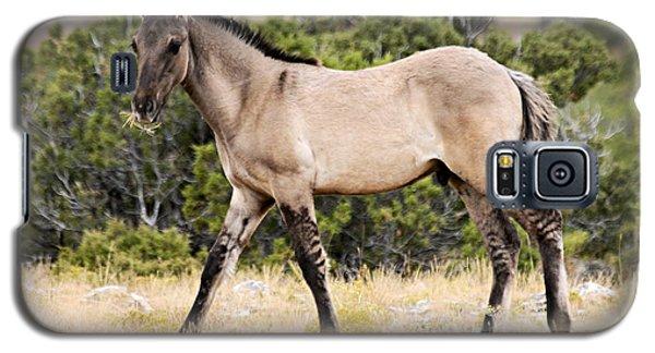 Kiger Colt Galaxy S5 Case