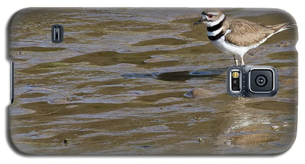 Killdeer Hunting Galaxy S5 Case