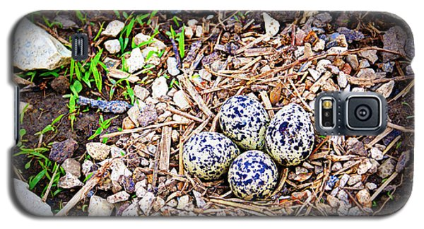 Killdeer Nest Galaxy S5 Case by Cricket Hackmann