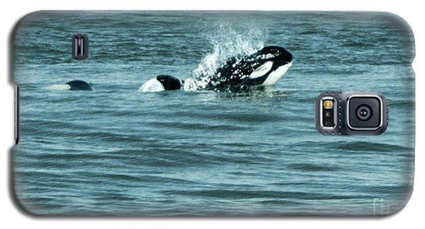 Galaxy S5 Case featuring the photograph Killer Whale by Wilko Van de Kamp