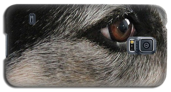 Kind Sight Galaxy S5 Case