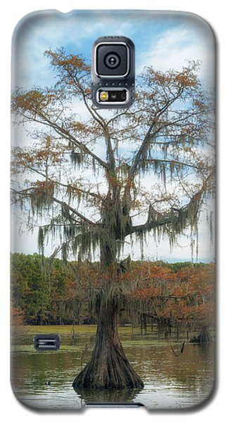 King Cypress Galaxy S5 Case
