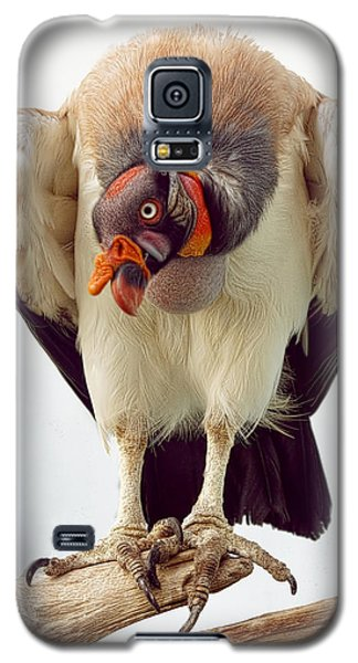 Galaxy S5 Case featuring the photograph King Of The Birds by Cheri McEachin