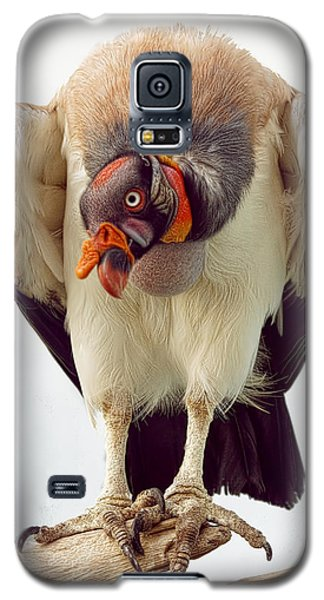 King Of The Birds Galaxy S5 Case by Cheri McEachin