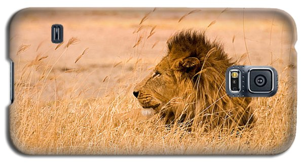 King Of The Pride Galaxy S5 Case