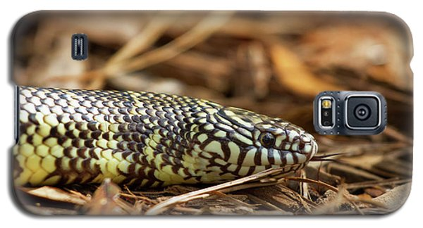 Galaxy S5 Case featuring the photograph King Snake 1 by Arthur Dodd