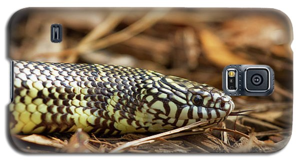 King Snake 1 Galaxy S5 Case