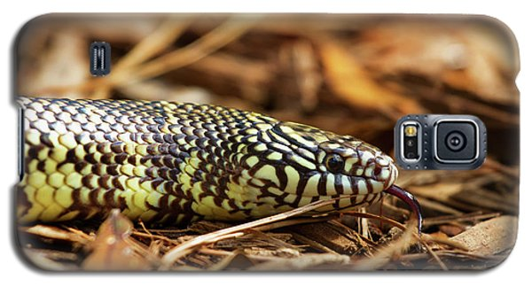 Galaxy S5 Case featuring the photograph King Snake 2 by Arthur Dodd
