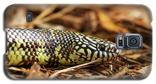 King Snake 2 Galaxy S5 Case