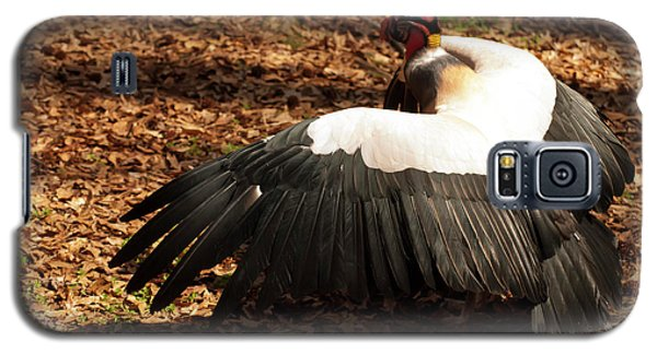King Vulture 2 Strutting Galaxy S5 Case by Chris Flees