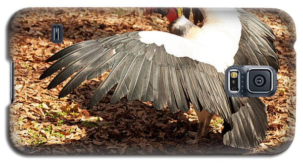 King Vulture 3 Strutting Galaxy S5 Case by Chris Flees