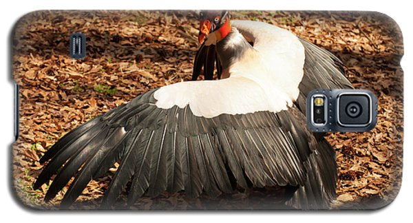 King Vulture 4 Strutting Galaxy S5 Case by Chris Flees