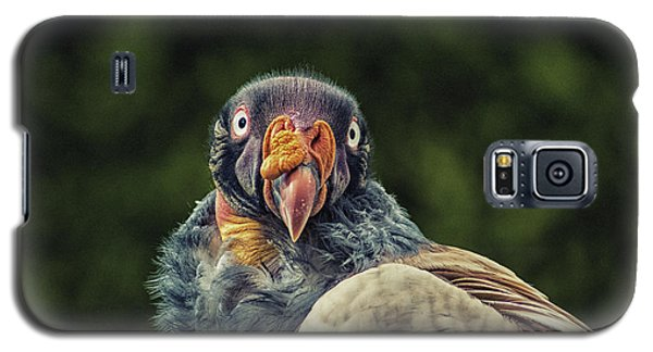 King Vulture Galaxy S5 Case by Martin Newman