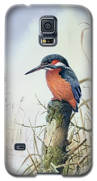 Kingfisher Galaxy S5 Case