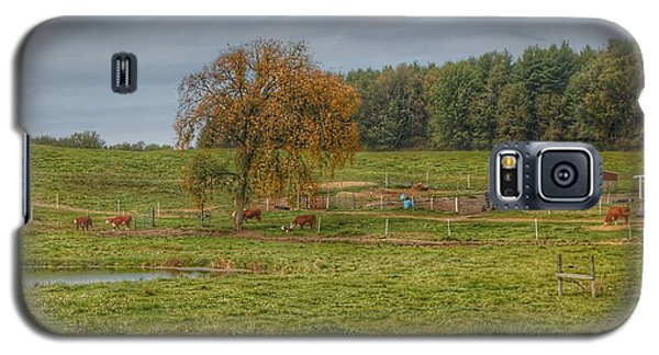 1002 - Kingston Road Cows Galaxy S5 Case