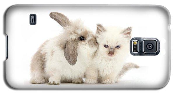 Kiss Her Fluffy Cheek Galaxy S5 Case