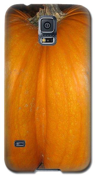 Butt Crack Pumpkin Galaxy S5 Case