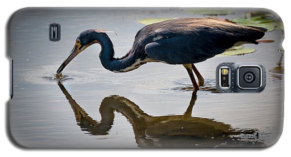Galaxy S5 Case featuring the photograph Kissing Heron by Allen Biedrzycki