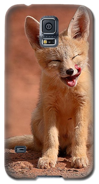 Kit Fox Pup Mid-lick Galaxy S5 Case by Max Allen