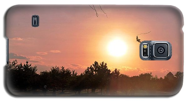 Kites Flying In Park Galaxy S5 Case