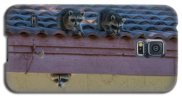 Kits On The Roof Galaxy S5 Case