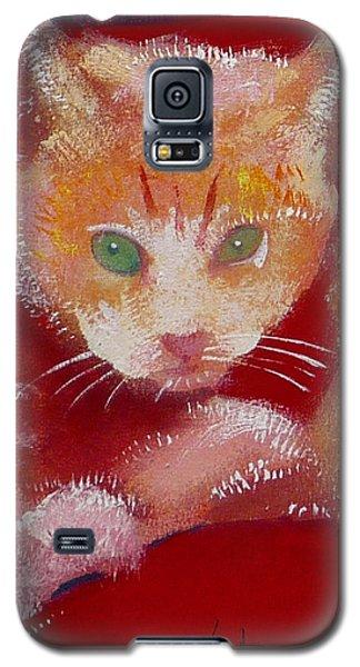 Kitten Galaxy S5 Case