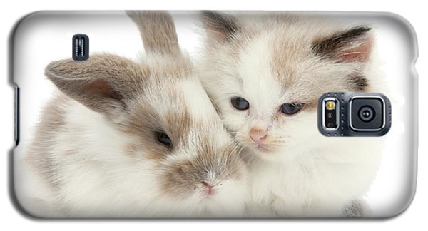 Kitten Cute Galaxy S5 Case