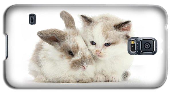 Kitten Cute Galaxy S5 Case