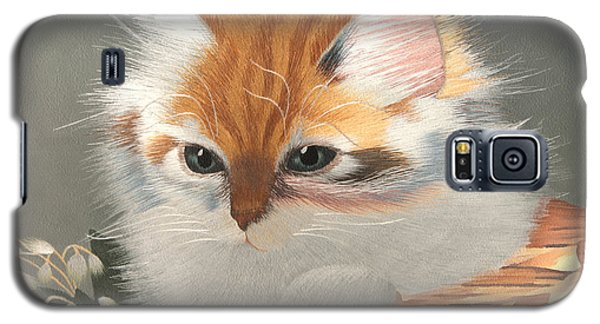 Kitten In A Basket Galaxy S5 Case by Sergey Lukashin