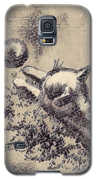Kitten Playing With Ball Galaxy S5 Case