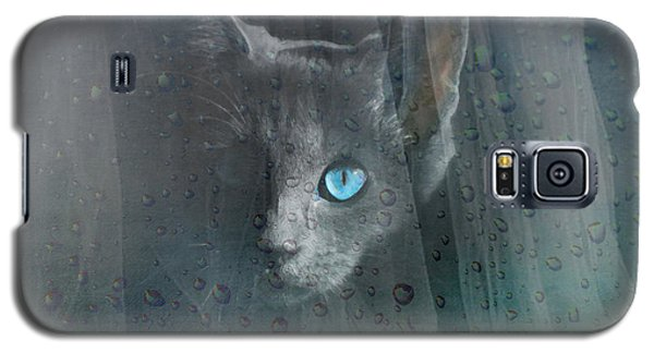 Kitty At The Window Galaxy S5 Case
