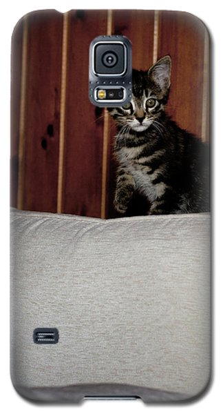 Galaxy S5 Case featuring the photograph Kitty by Laura Melis