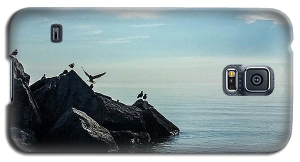Klode Gulls Galaxy S5 Case