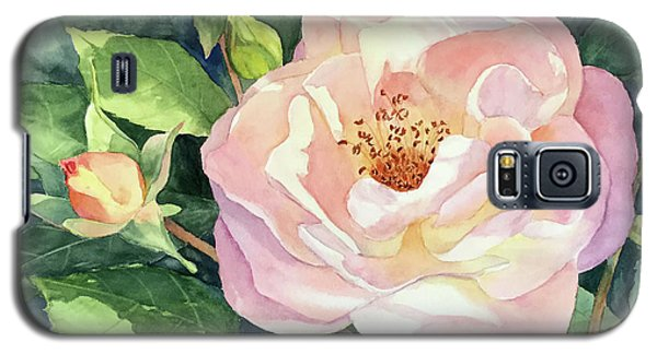 Knockout Rose And Buds Galaxy S5 Case by Vikki Bouffard