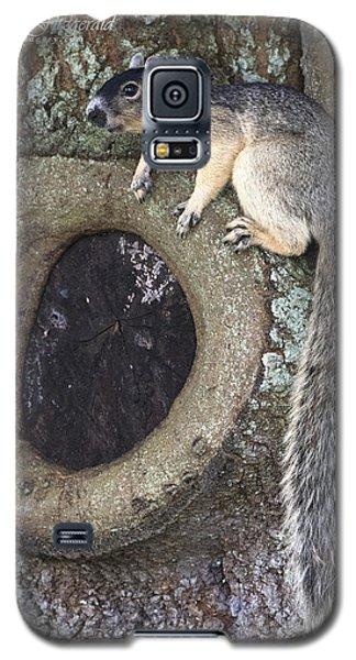 Knot A Squirrel Galaxy S5 Case