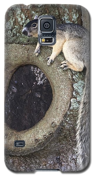 Knot A Squirrel Galaxy S5 Case