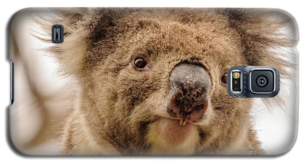 Koala 4 Galaxy S5 Case