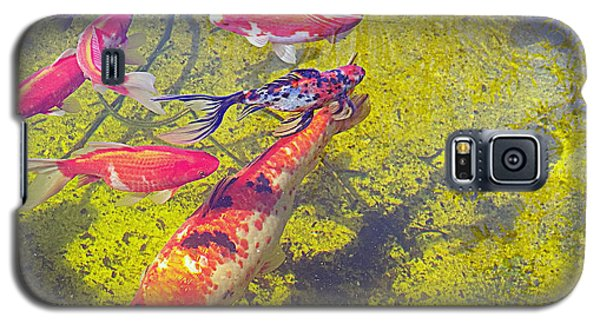 Koi And Friends Galaxy S5 Case