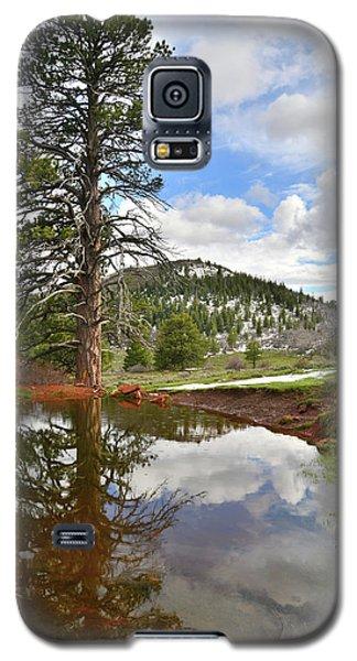 Kolob Reflection Galaxy S5 Case