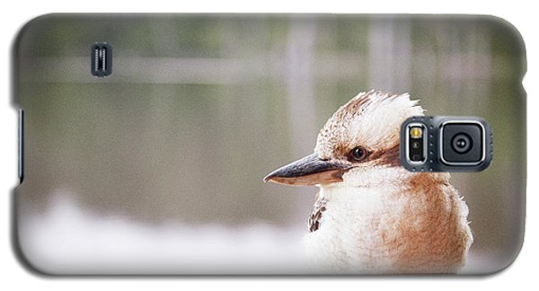 Galaxy S5 Case featuring the photograph Kookaburra by Ivy Ho