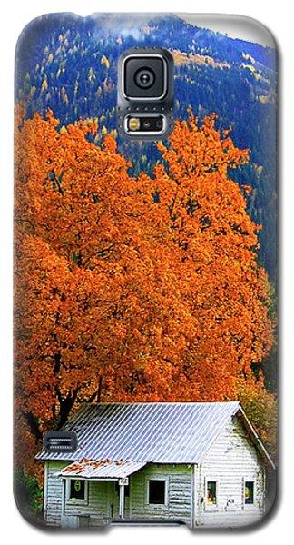 Kootenay Autumn Shed Galaxy S5 Case