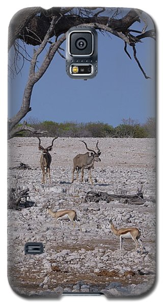 Galaxy S5 Case featuring the photograph Kudu And Springbok 2 by Ernie Echols