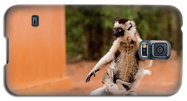 Kung Fu Mom Galaxy S5 Case by Alex Lapidus