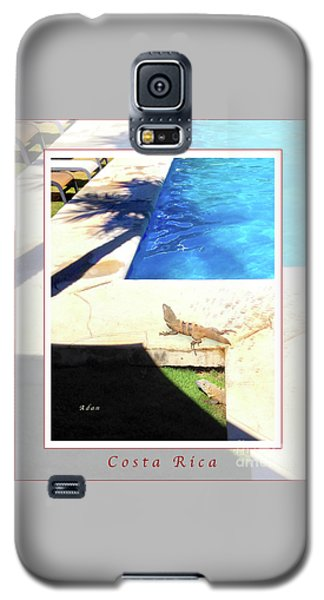 la Casita Playa Hermosa Puntarenas Costa Rica - Iguanas Poolside Greeting Card Poster Galaxy S5 Case by Felipe Adan Lerma