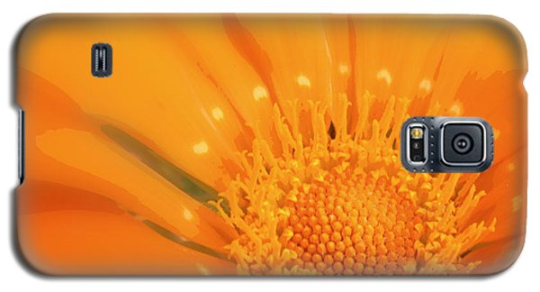 La Fleur D'orange Galaxy S5 Case