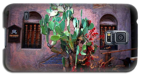La Hacienda In Old Tuscon Az Galaxy S5 Case